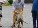 Hrabia Hans Ulrich Schaffgotsch wizyta w Kopicach 2018_3